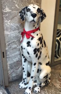 Dalmatian Dog - Count the Spots!