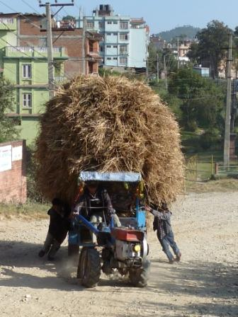 Nepalese man carrying straw at Nargakot, Nepal. www.gypsyat60.com