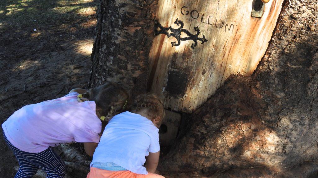 Look - there's a Hobbit! (Magic Tree at Scarborough, Queensland, Australia) www.gypsyat60.com