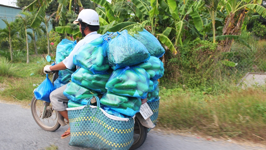 A tonne of cucumbers being transported by motorbike in Ho Chi Minh, Vietnam. www.gypsyat60.com