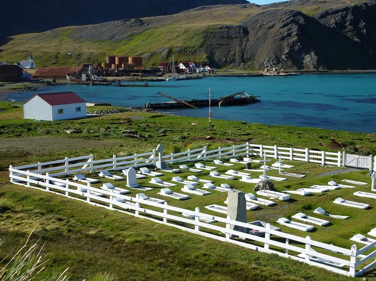 Overview of The Whalers Cemetery, Grytviken, South Georgia, Antarctica. Ernest Shacketon's grave is the large stone pillar at the back of cemetery. www.gypsyat60.com
