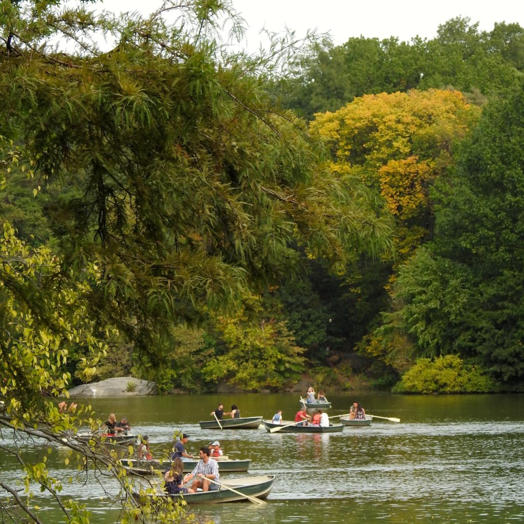 A lazy day of boating - Central Park Lake, NYC - autumn colours just starting to show on the trees.www.gypsyat60.com